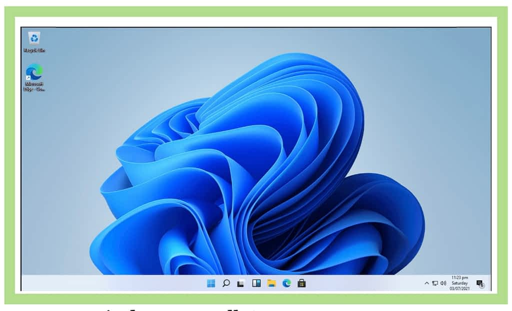 Windows 11 view