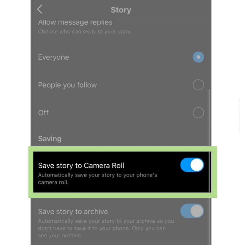 Save story to camera roll